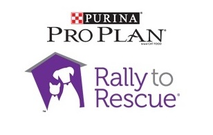 Rally to Rescue